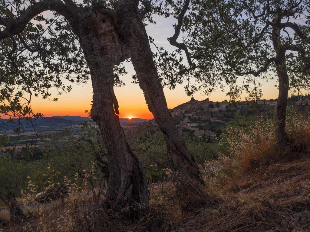 Trevi al tramonto [foto di Giampaolo Filippucci & Tiziana Ravagli]